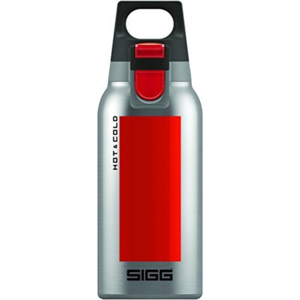 Sigg H& C ONE BRUSHED 0.3L
