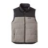 Patagonia M' S REVERSIBLE BIVY DOWN VEST Miehet - FEATHER GREY