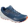 Salomon SENSE RIDE 3 GTX INVIS. FIT Miehet - POSEIDON/PEAR BLUE/CHERRY